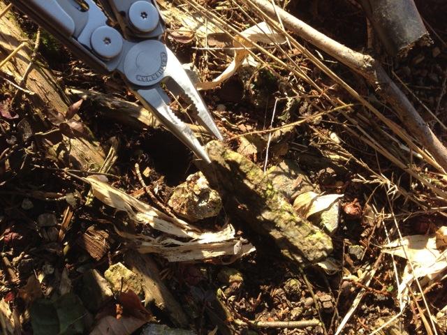 野原、山林、そしてアトリエでのWAVE使用レポート